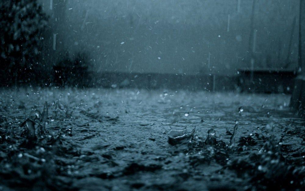 暴雨的回憶