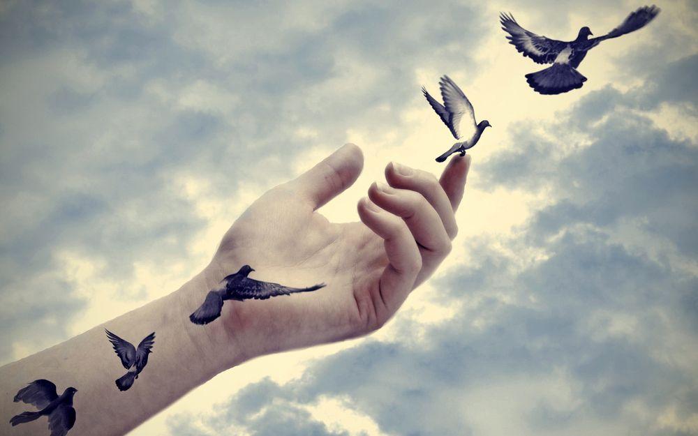 放手 如鳥般