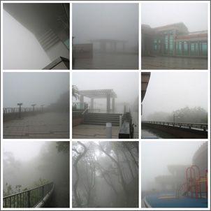 太平山大霧一片