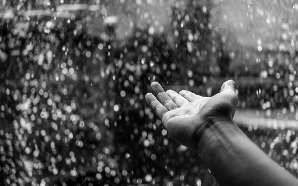 11月1日 雨