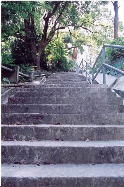 拔萃男書院 後門樓梯
