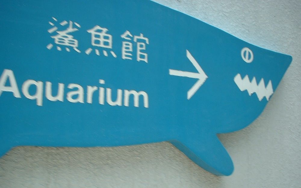 海洋公園遊2002 - 鯊魚館