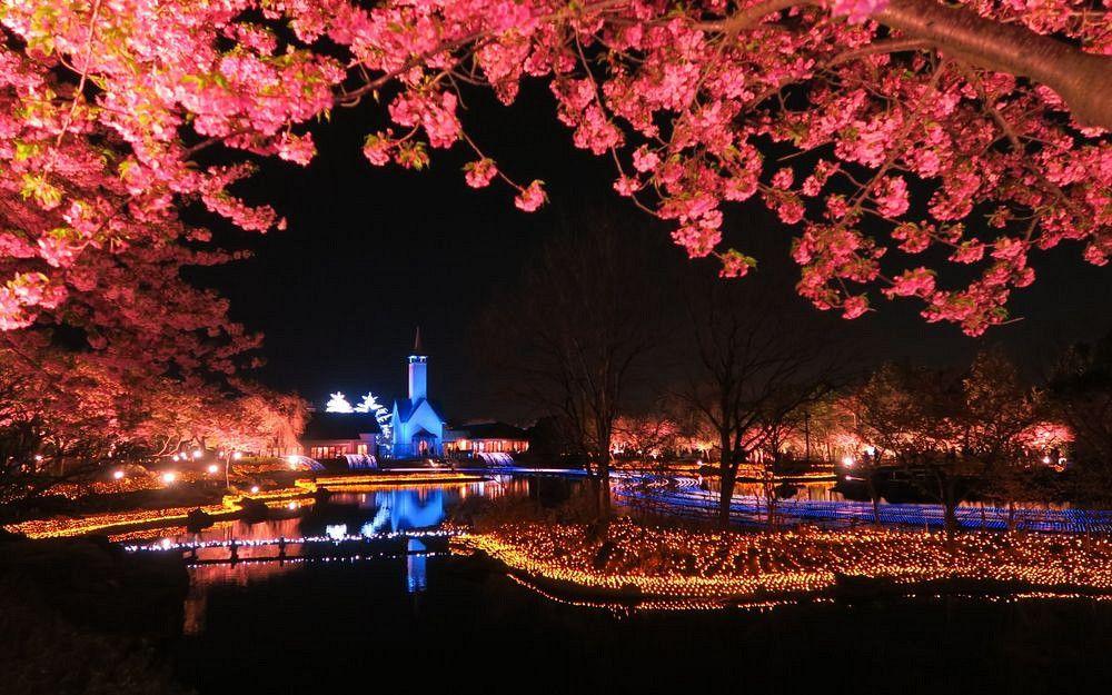 名古屋 - 名花之里